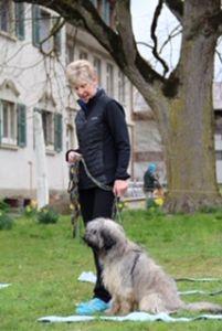 Kathy Cascade Swiss training