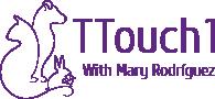 TTouch Logo